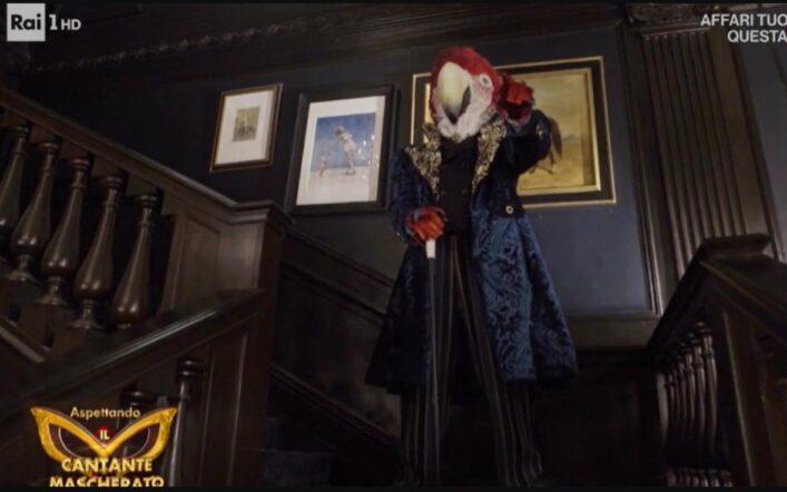 Il pappagallo de Il Cantante Mascherato 2021, potrebbe essere un uomo maturo